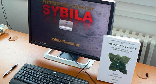 Students can participate in SYBILA's activities